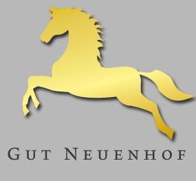 Vechtaer Hengstschau-Highlight mit Escolar