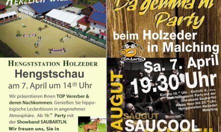 Herzliche Einladung zur traditionellen Outdoor-Hengstschau auf der Hengststation Holzeder in Malching am 07. April um 14:00 Uhr