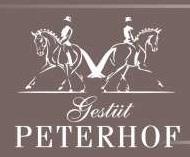 Immenhof-Saga wird auf Gestüt Peterhof fortgesetzt