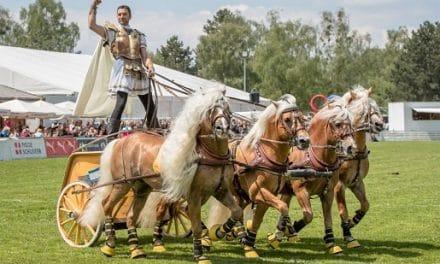 Weihnachtsticket – Special Startschuss für den Ticketvorverkauf  von Pferd International München 2020