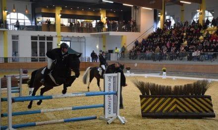 Tag der offenen Schule im abz Lambach FR Pferdewirtschaft