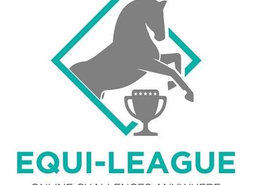 Turniere reiten von zu Hause aus – Online-Turnierportal EQUI-LEAGUE macht's möglich